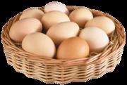 Яйцо 1кат 10шт кар нан кор